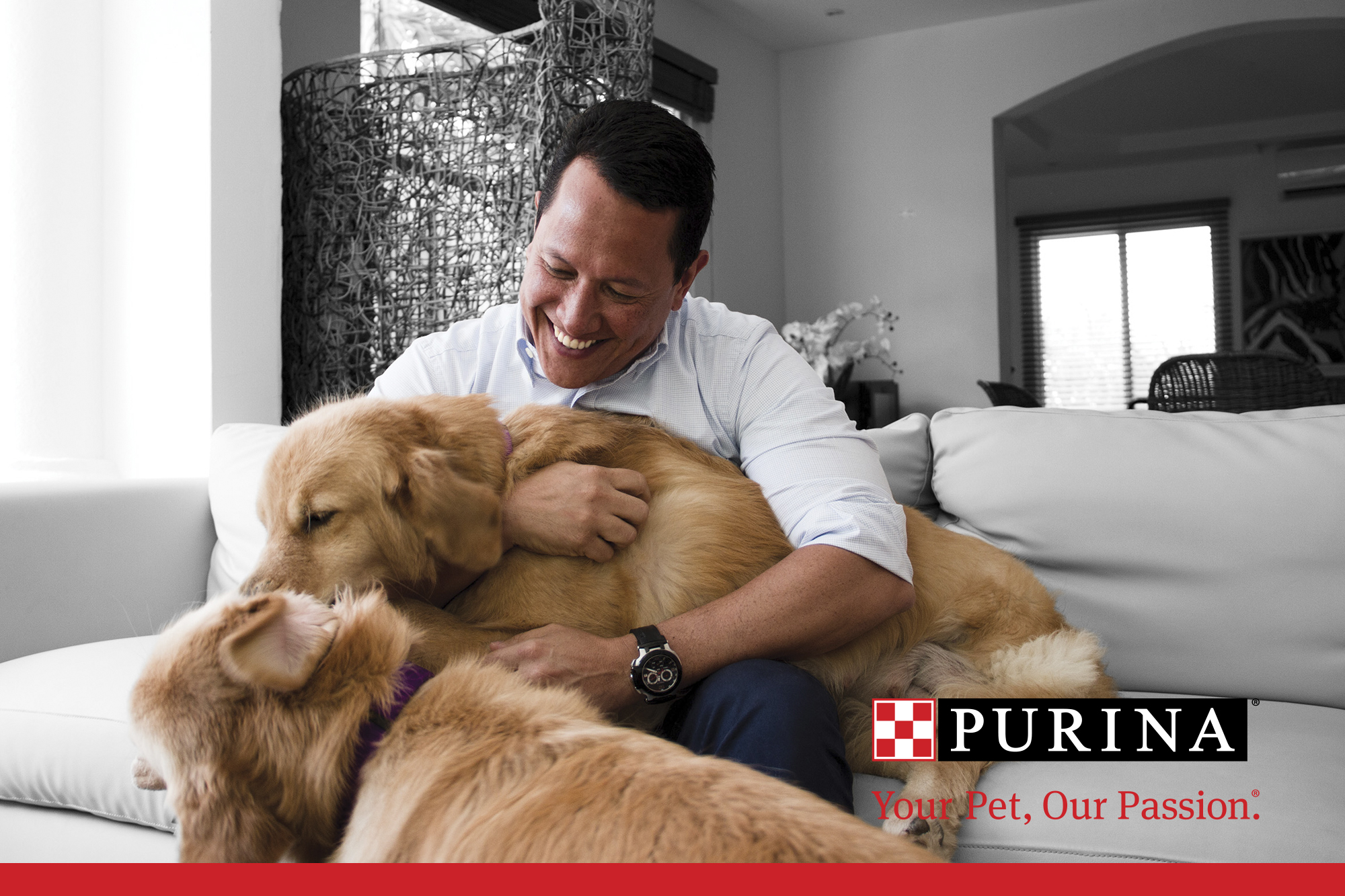 Purina Your Pet Our Passion